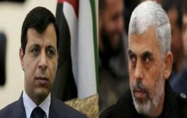 محنة المدنيين في غزة تدفع حركة حماس إلى التحلي بقدر أكبر من المرونة ترجمة: هالة أبو سليم